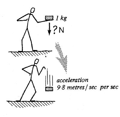 http://www.nuffieldfoundation.org/practical-physics/feeling-force-10-n